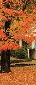 Fall Housing